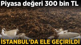 İstanbul'da ele geçirildi! Piyasa değeri 300 bin TL...