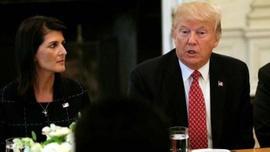 ABD'nin eski BM Büyükelçisi Haley: Trump eğer dizginlenmezse…