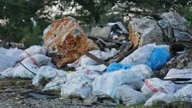 Bir günde 65 ton çöp (Bodrum ormanlarında temizlik)