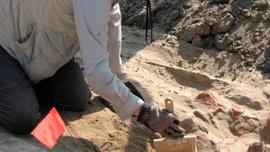 Malezya'da tarih öncesi dönem ait eşyalar bulundu