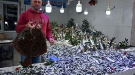 Karadeniz'de balık bolluğu! Vira Bismillah