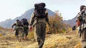 PKK'lı terörist gizli cephaneliği patlattı