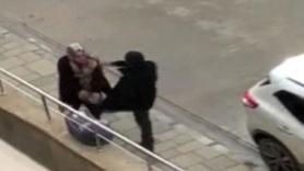 Cani adam yanındaki çocuğa aldırmadan kadına saldırdı