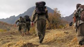 Şanlıurfa'da 2 terörist yakalandı