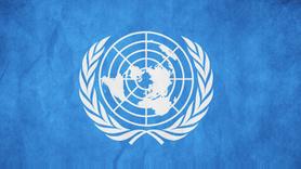 BM'den Türkiye ve Afrin açıklaması