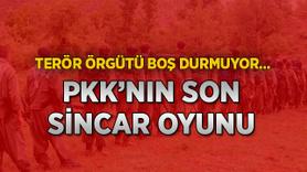 Terör örgütü PKK'nın son Sincar oyunu