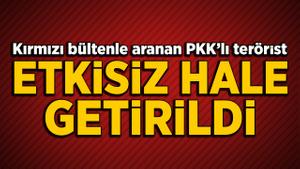 Kırmızı bültenle aranan PKK'lı terörist etkisiz hale getirildi