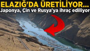 Elazığ'da üretiliyor! Rusya, Çin ve Japonya'ya ihraç ediliyor