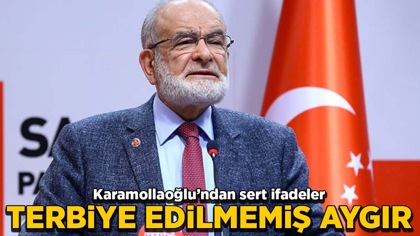 Temel Karamollaoğlu: Terbiye edilmemiş aygır!