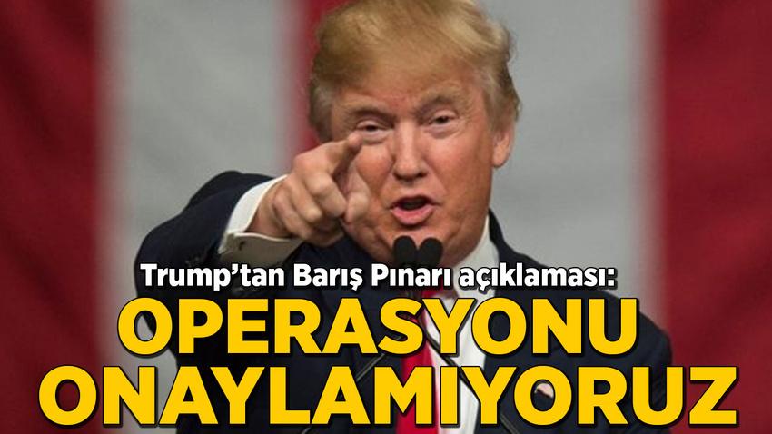 Trump'tan Barış Pınarı açıklaması: Operasyonu onaylamıyoruz