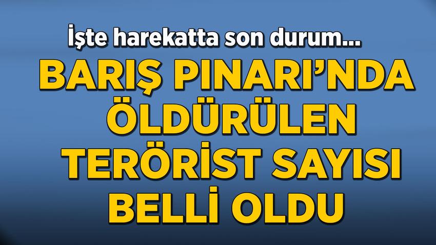 Barış Pınarı'nda öldürülen terörist sayısı belli oldu
