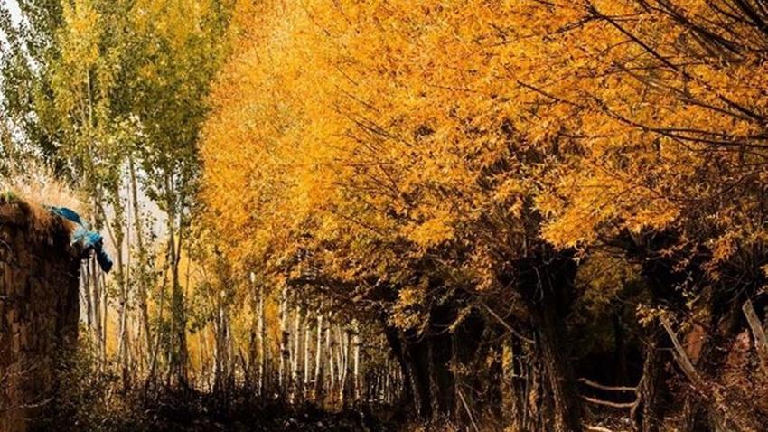 Türkiye'den sonbahar manzaraları.