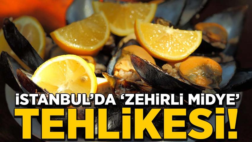 İstanbul'da 'zehirli midye' tehlikesi