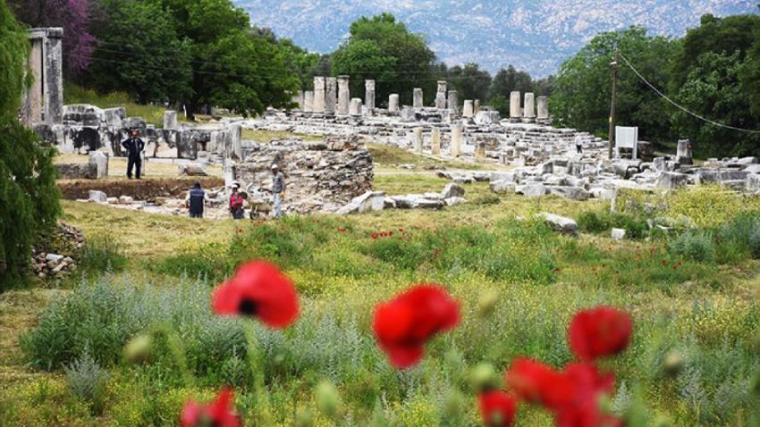 İki bin yıllık sütunlar ayağa kaldırılıyor