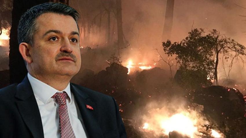 Bakan Pakdemirli: Yangın kontrol altında alındı
