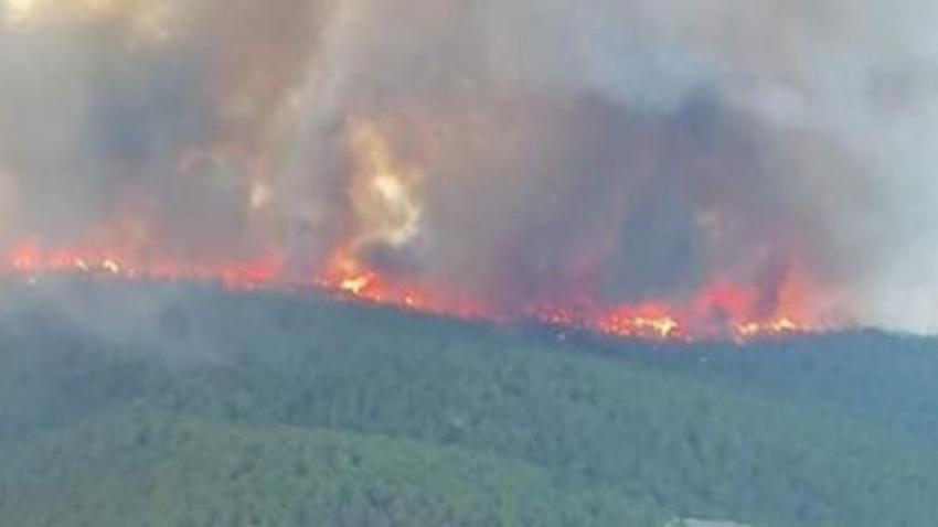 Kütahya'daki orman yangını kontrol altında