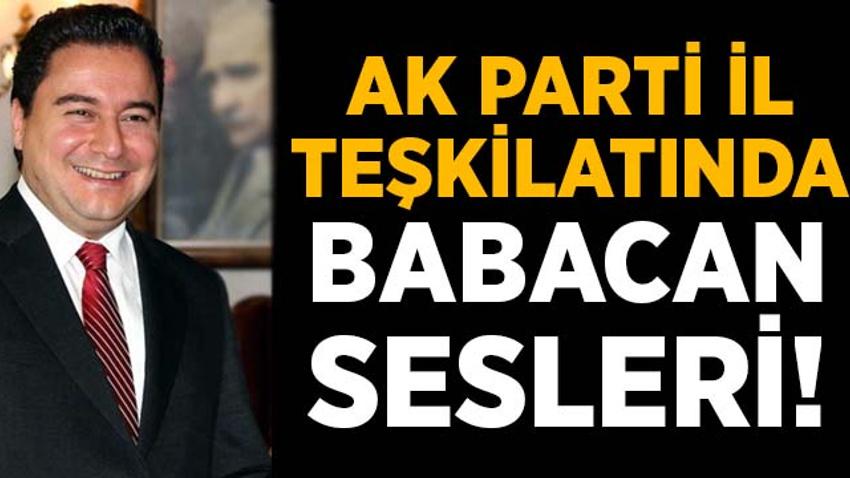 AK Parti İzmir teşkilatında Babacan sesleri