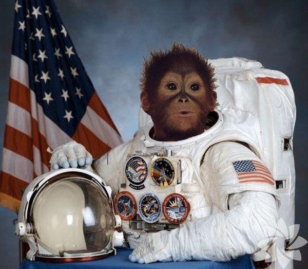 4 - 10 Ekim dünya Uzay Haftası...  Uzaya gönderilmiş birbirinden ilginç şeyler...! - Sayfa 3