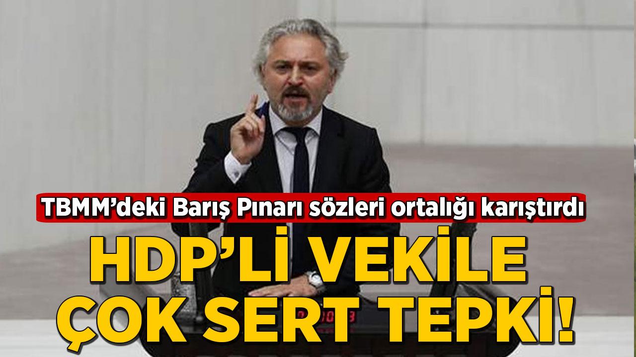 HDP'li vekilin Barış Pınarı Harekatı'na ilişkin sözleri TBMM'yi karıştırdı!