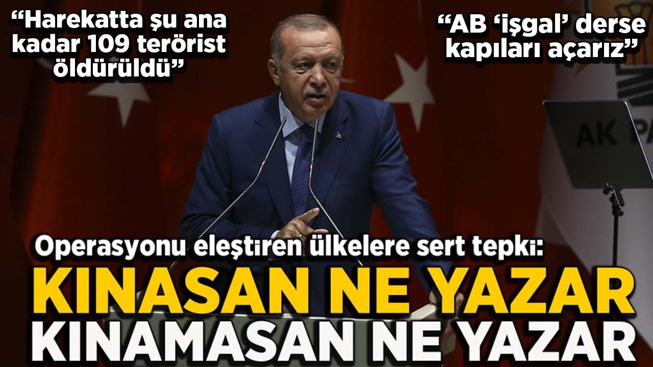 Erdoğan: AB 'işgal' derse kapıları açarız