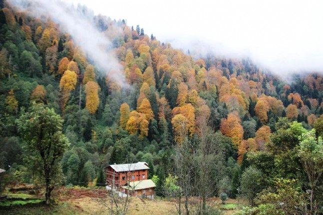 Türkiye'den sonbahar manzaraları. - Sayfa 4
