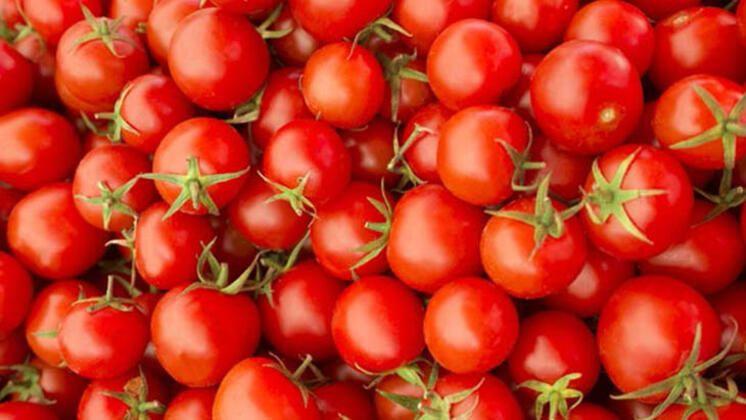 Canan Karatay açıkladı: Gripten koruyan besinler - Sayfa 2