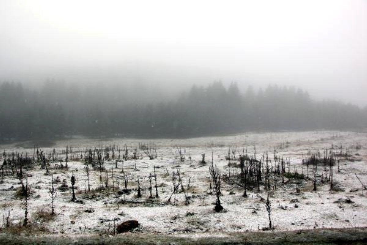 Kar yağışı erken başladı! Meteoroloji'den uyarılar üst üste geliyor - Sayfa 4
