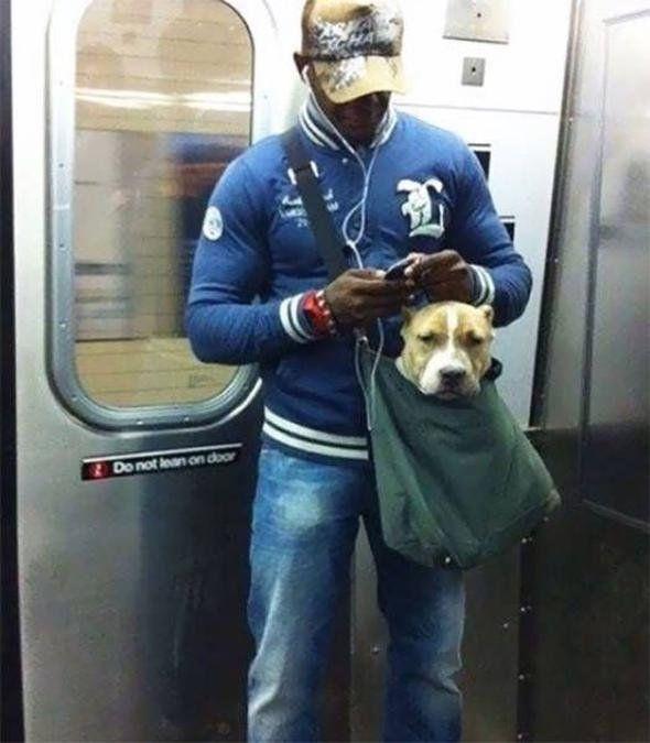 Dünya metrolarında görülmüş en garip yolcular - Sayfa 3