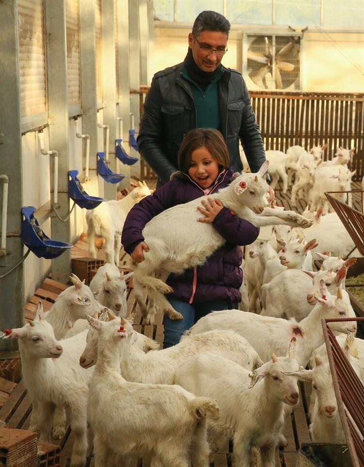 Kızı süt içsin diye kurduğu çiftlikle zincir marketlere girdi - Sayfa 2