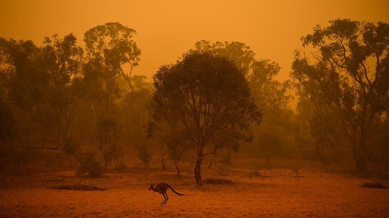 Avustralya'da korkunç felaket! Yetkililer çağrı yaptı - Sayfa 2