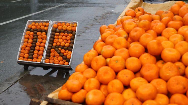 Günde 2 taneden fazla mandalina yerseniz... - Sayfa 1