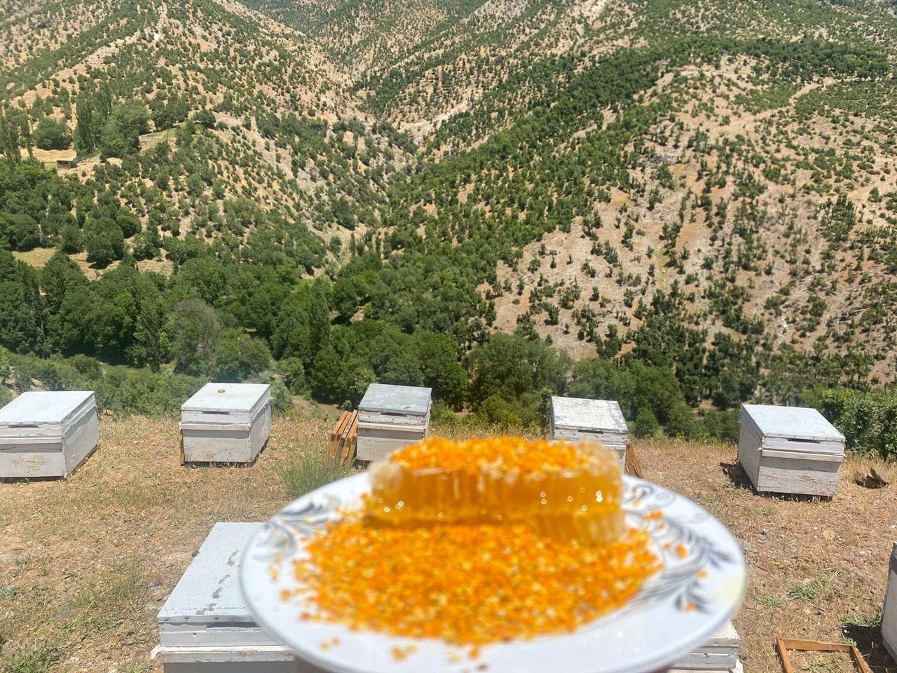 Siirt'te köylülerin yeni gelir kaynağı olan polen hasadına başlandı - Sayfa 2