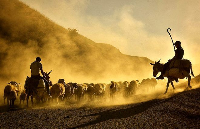 Her gün batımında Nemrut Dağı'nda tozlar gökyüzüne ulaşıyor - Sayfa 2