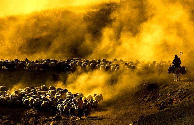 Her gün batımında Nemrut Dağı'nda tozlar gökyüzüne ulaşıyor - Sayfa 4