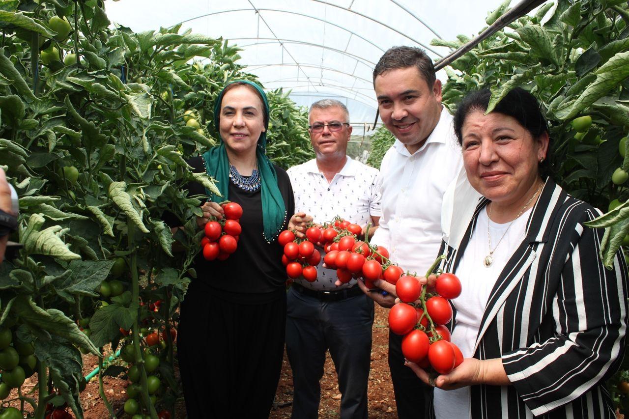 Vekil sıkı pazarlık yaptı, domates 2 lira 80 kuruşu gördü - Sayfa 1