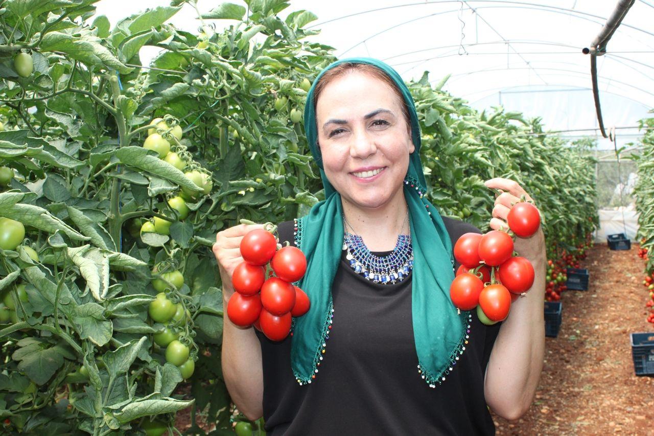 Vekil sıkı pazarlık yaptı, domates 2 lira 80 kuruşu gördü - Sayfa 2