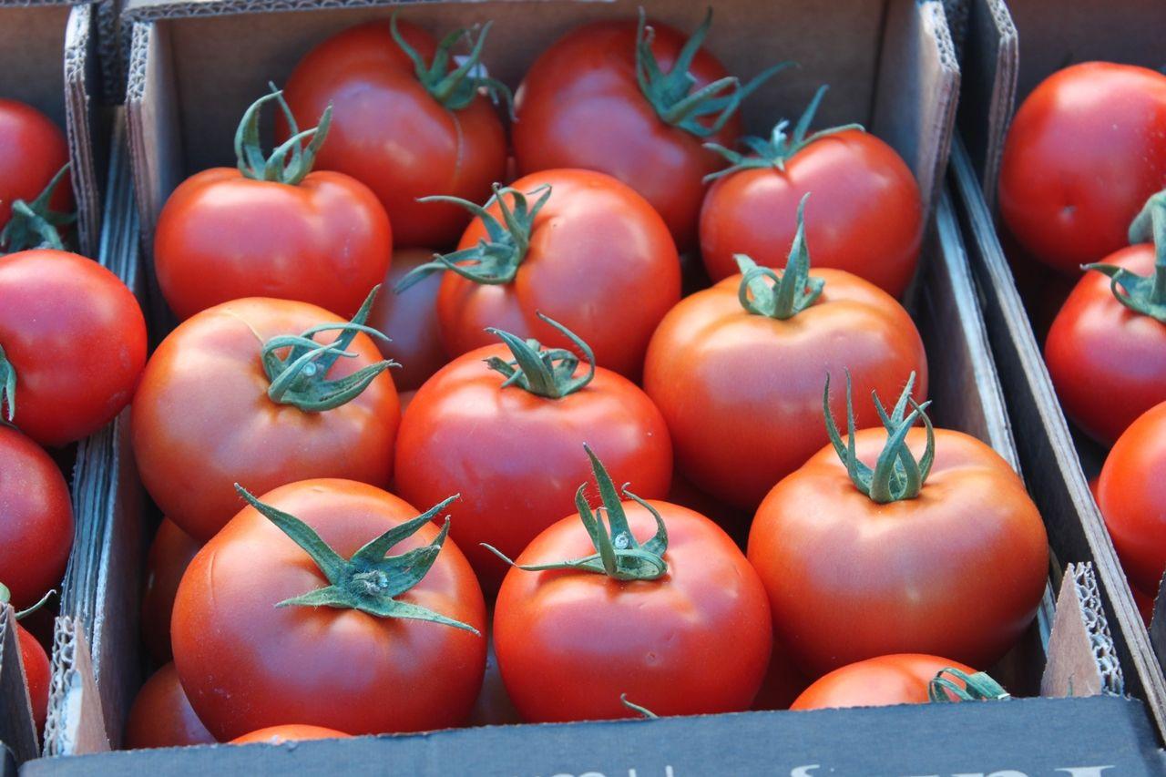 Vekil sıkı pazarlık yaptı, domates 2 lira 80 kuruşu gördü - Sayfa 3