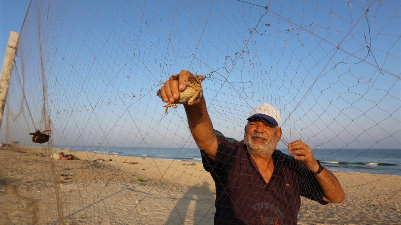 Gazze'de bıldırcın avı - Sayfa 1