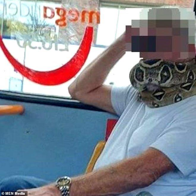Olayı çok yanlış anlamış! Yaşlı adam otobüste maske yerine yüzüne yılanı dolayıp yolculuk etti - Sayfa 3