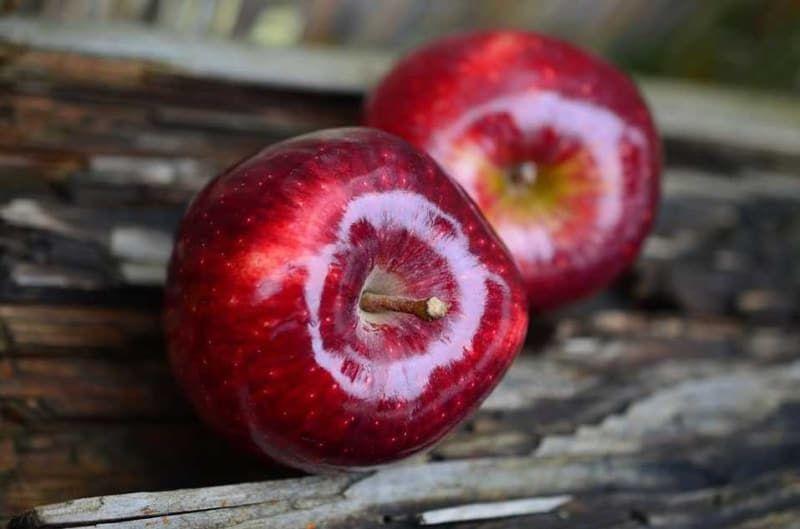 Tükettiğiniz meyve ve sebzeler kaç kalori biliyor musunuz? İşte o sorunun cevabı - Sayfa 3