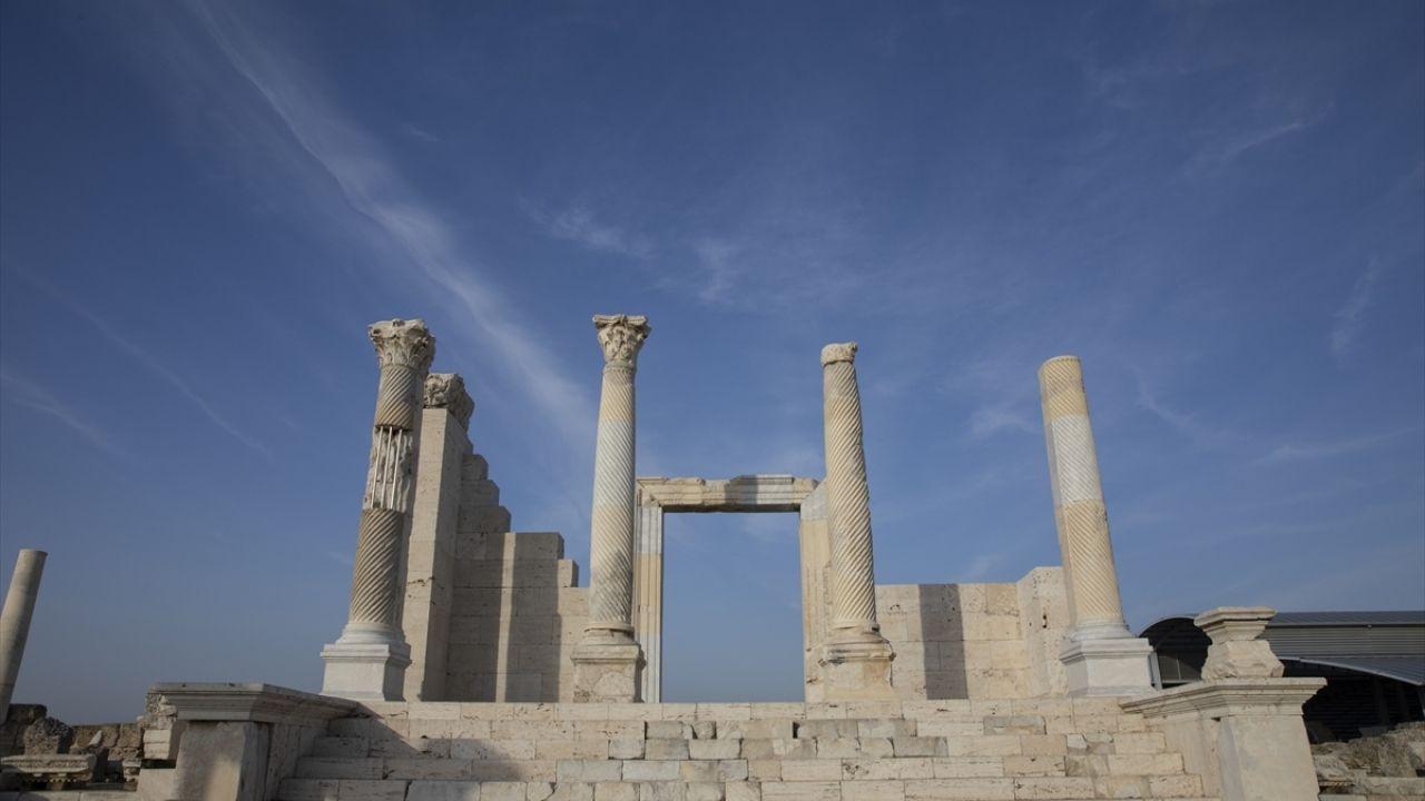 Laodikya Antik Kenti'nin küçük sakinleri: Dikenli Kelerler - Sayfa 2