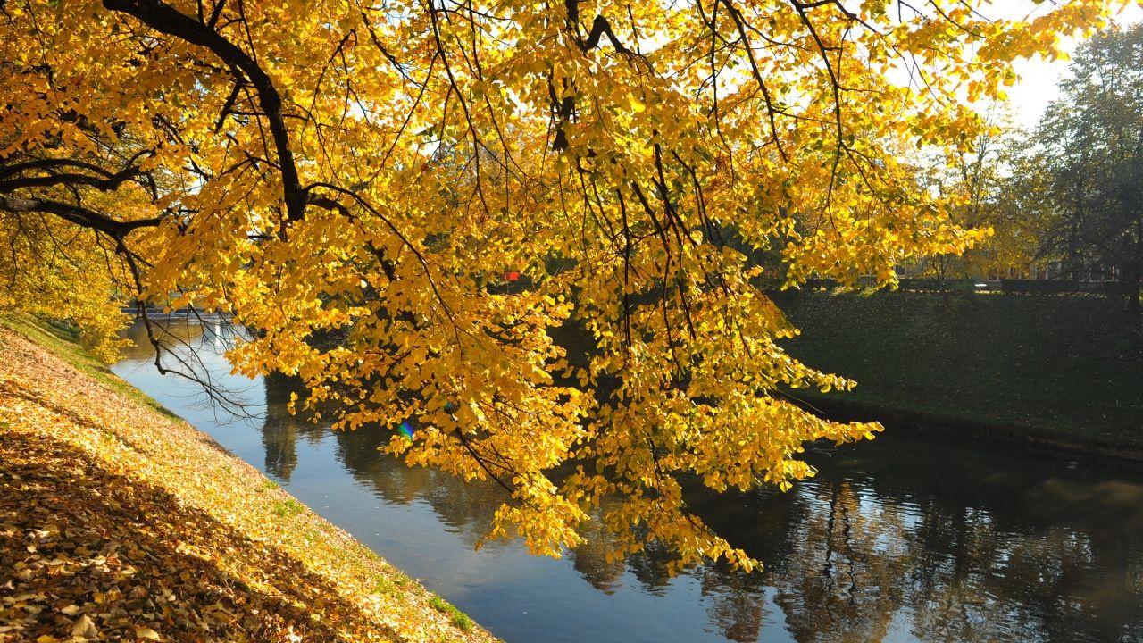 Bosna Hersek'te sonbahar renkleri - Sayfa 1