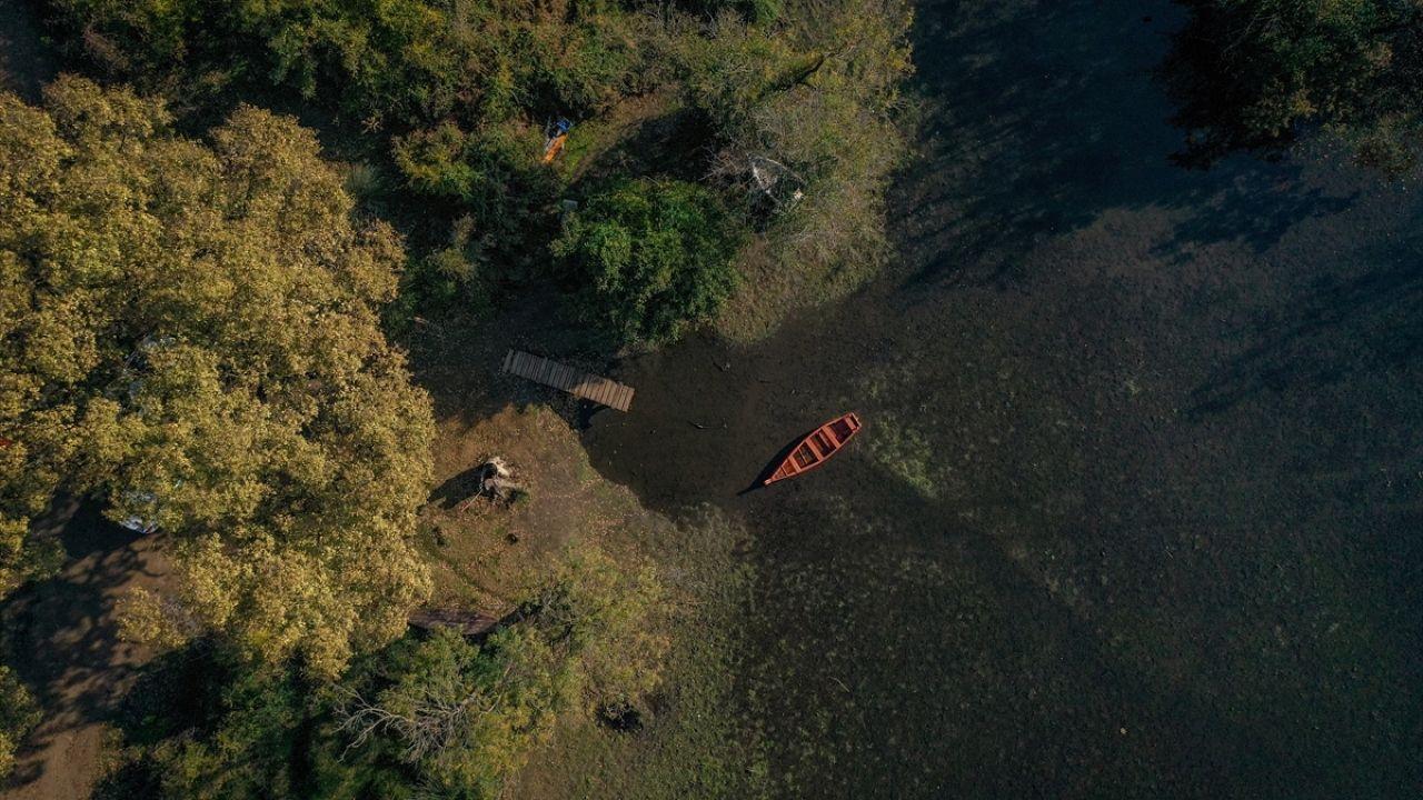 Denizle ormanın kucaklaştığı Karacabey Longoz'unda sonbahar - Sayfa 2