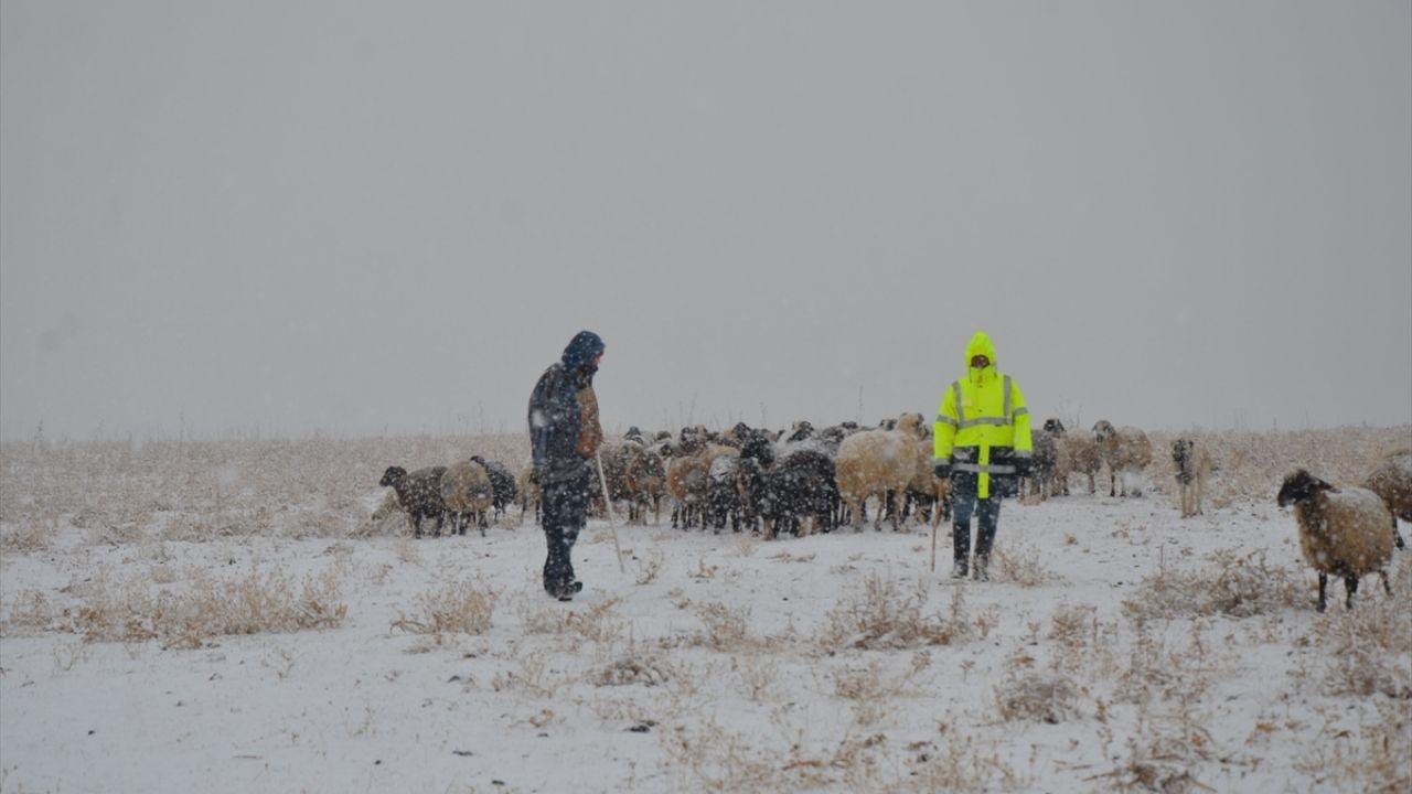 Muş'ta çobanlar kar yağışına hazırlıksız yakalandı - Sayfa 1