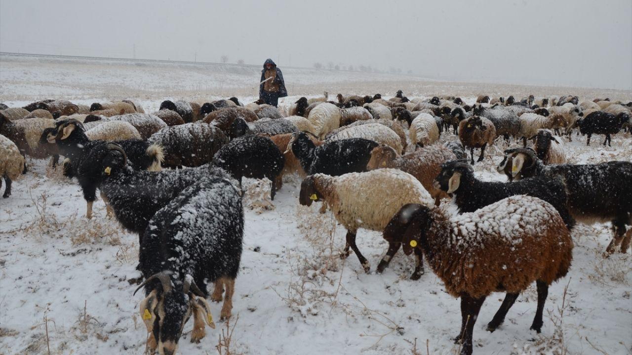 Muş'ta çobanlar kar yağışına hazırlıksız yakalandı - Sayfa 2