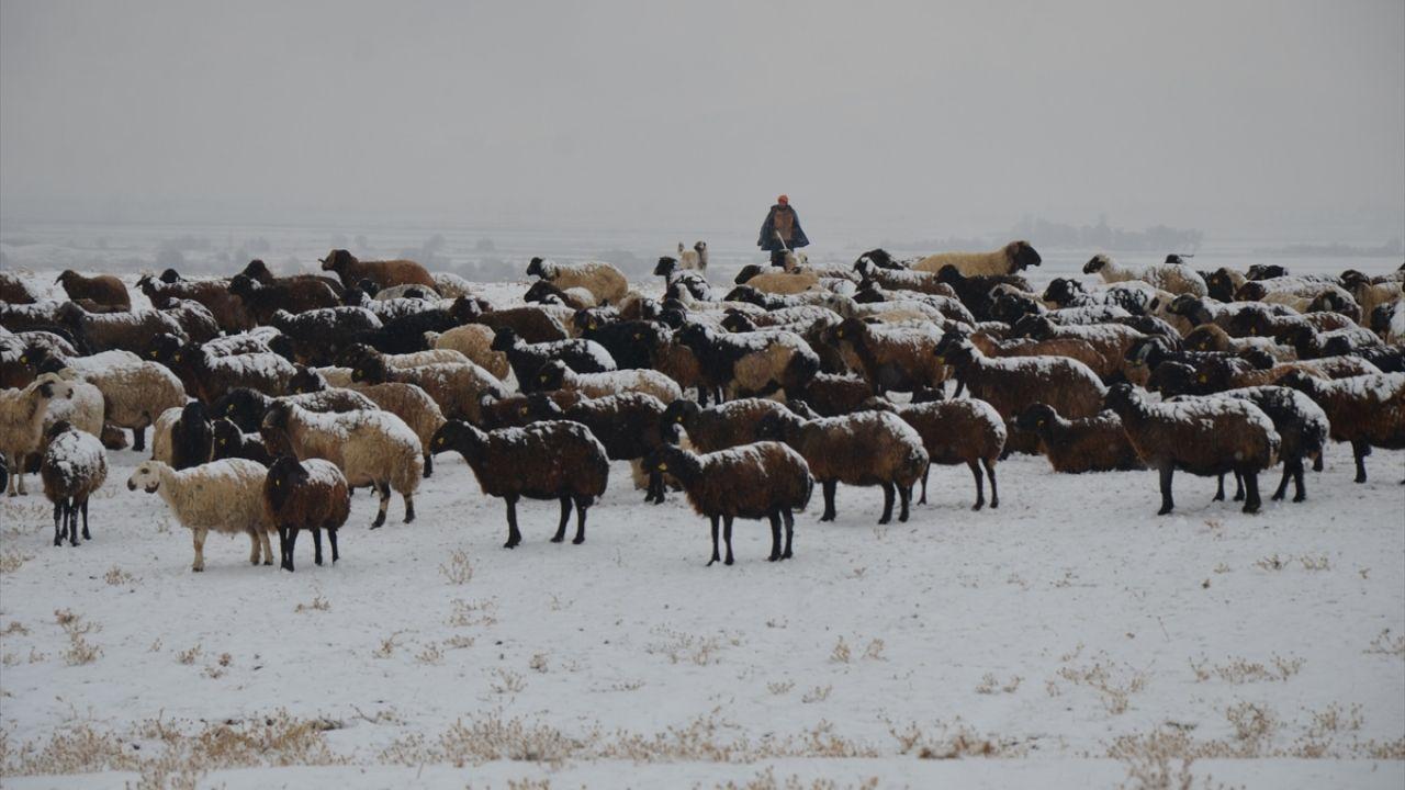 Muş'ta çobanlar kar yağışına hazırlıksız yakalandı - Sayfa 4