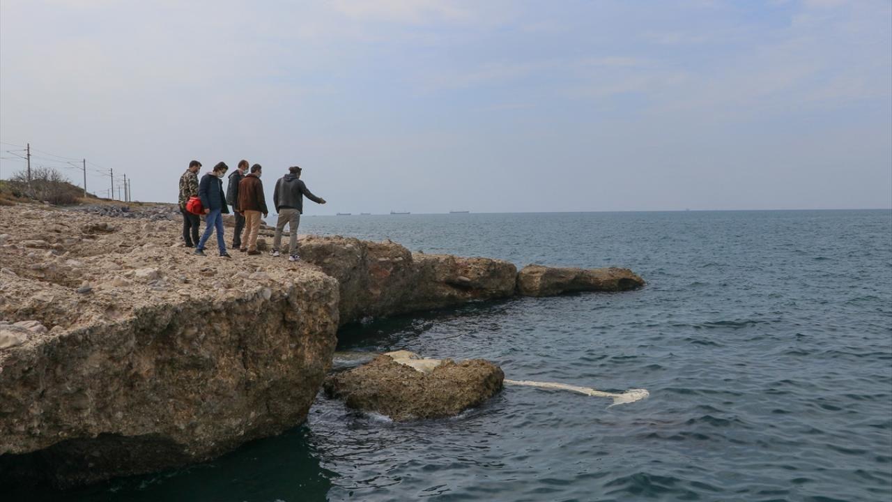 12 metrelik ölü balina yavrusu kıyıya vurdu - Sayfa 4