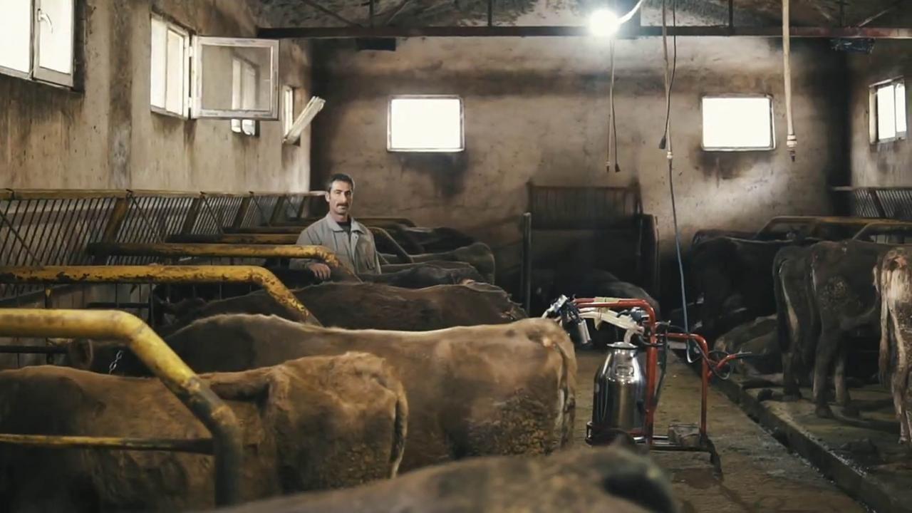 'Soğuk Zincir Süt Projesi' sayesinde üreticilerin yüzü güldü - Sayfa 3