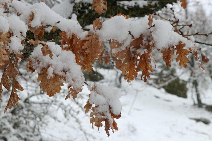 Nisan ayında kar sürprizi - Sayfa 4