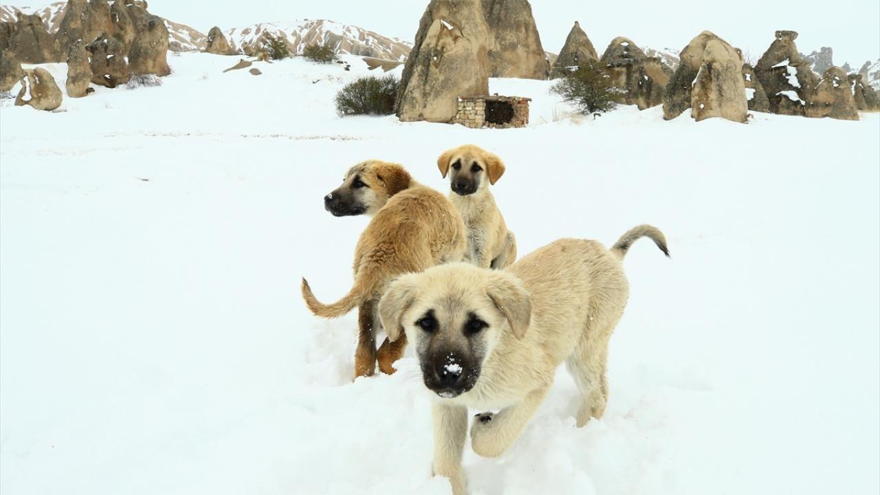 Kapadokya ilkbaharda beyaza büründü - Sayfa 2